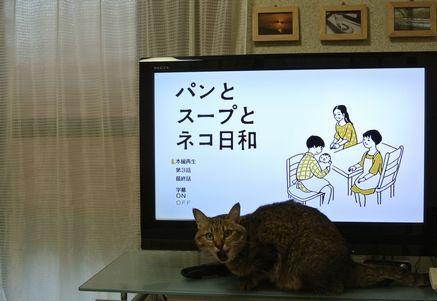 ひだまり パンとスープとネコ日和.jpg
