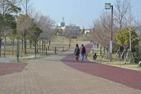 ひだまり 健康公園.jpg