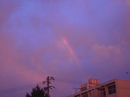 ひだまり 虹.jpg