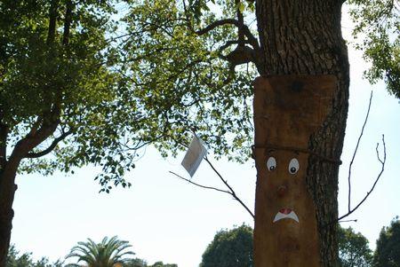 ひだまり 離宮木の顔.jpg